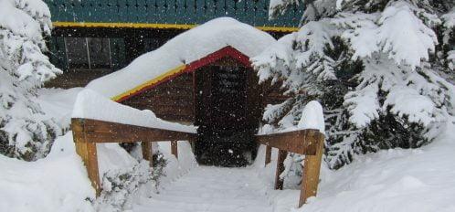 Lodge back snow